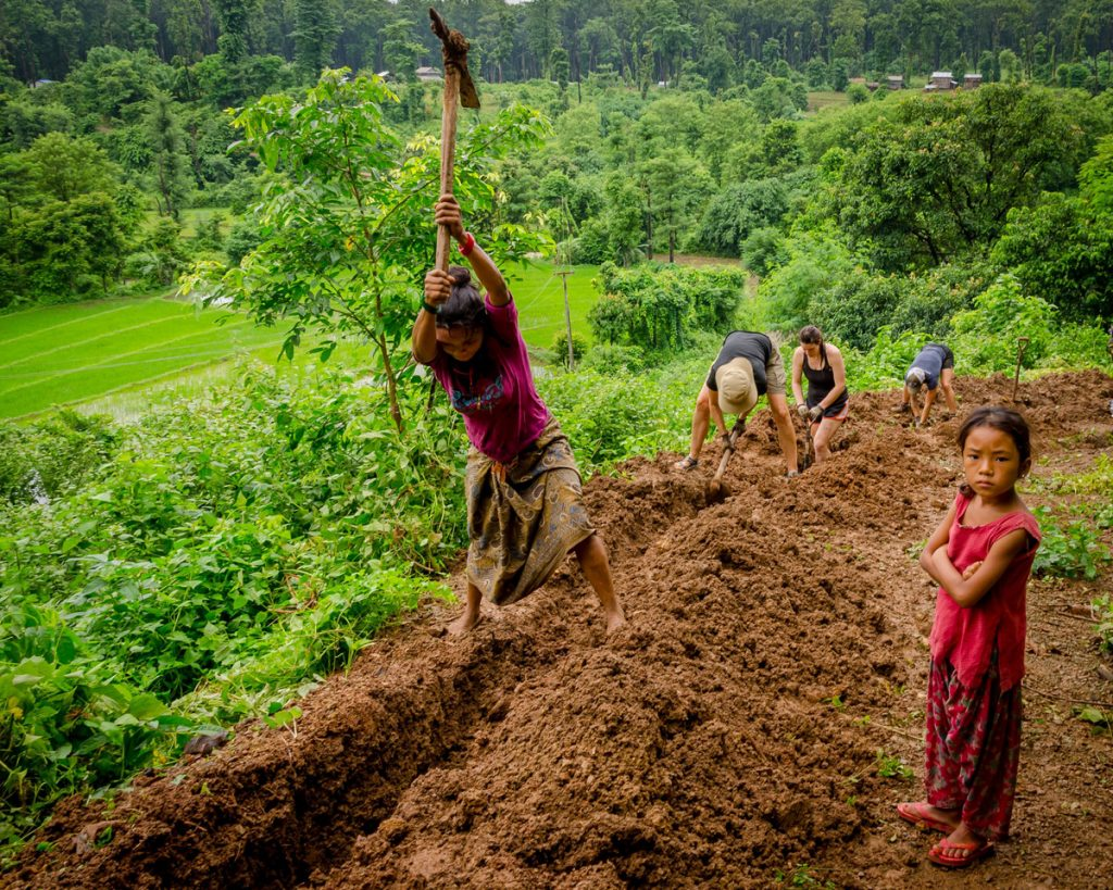Kávová plantáž a tvrdá práca farmárov.