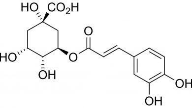 Photo of Poznáte fantastické výhody kyseliny chlorogénovej?
