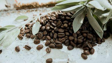 Photo of Konzumovanie kávových zŕn: Aký počet je v poriadku a čo to s vami spraví?