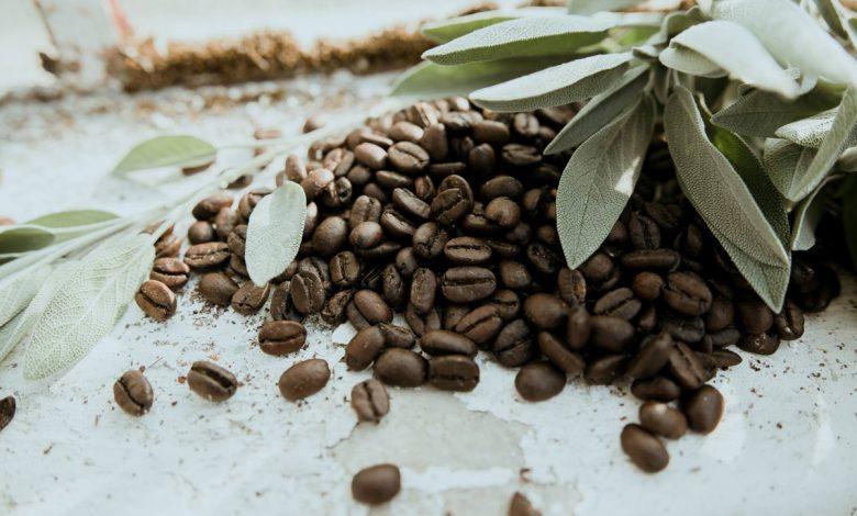 Jedenie a konzumovanie kávových zŕn