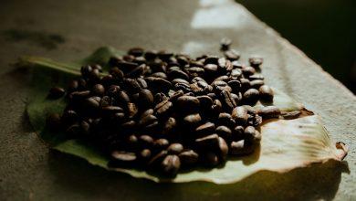 Photo of Prečo v zrnkovej verzii Cafézie nevidieť byliny?