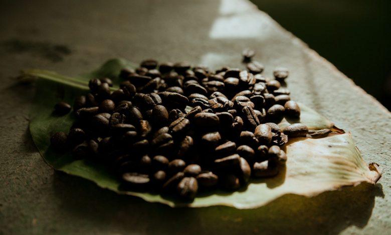 bio organická káva Cafézia, zrnková