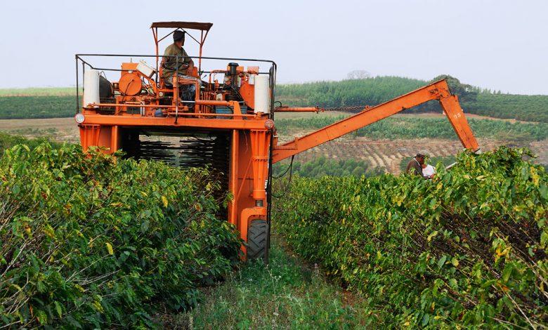Stroj na zber kávy, Brazília