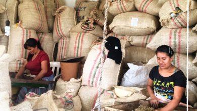 Photo of Kolumbia bojuje za vyššie ceny kávy, obáva sa krachu farmárov