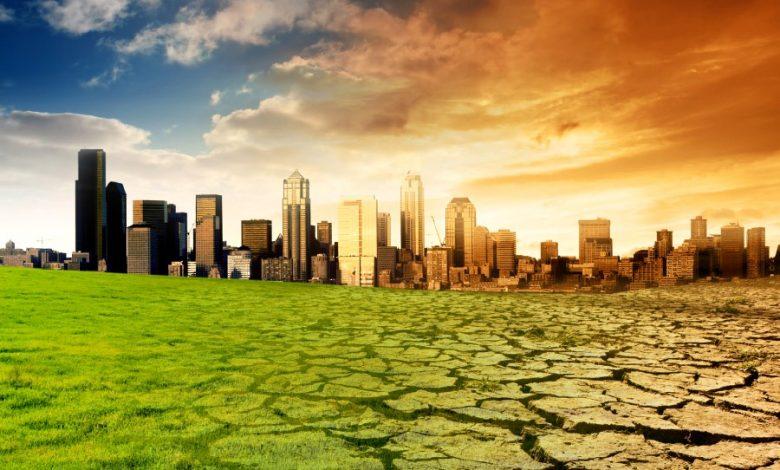 Globálne otepľovanie a káva