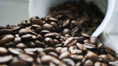 Photo of Čo je to výberová káva?