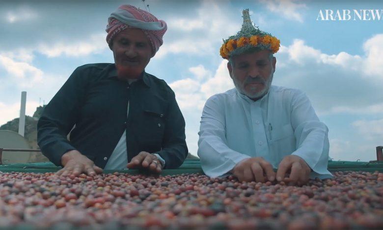 Khawlani, pestovanie a kultivovanie kávy
