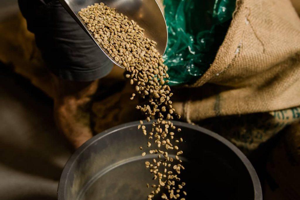 detailný pohľad na kávové zrná