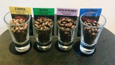Photo of Perlová káva: Keď sa v kávovníkovej čerešni zrodí len jedno zrnko