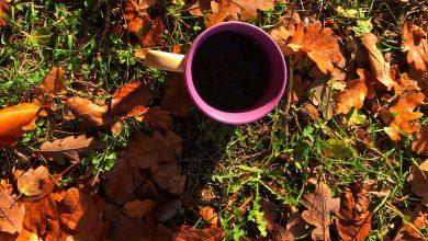 Photo of Káva smrdí ako benzín či zhnité mäso, koronavírus vie človeka úplne poblázniť