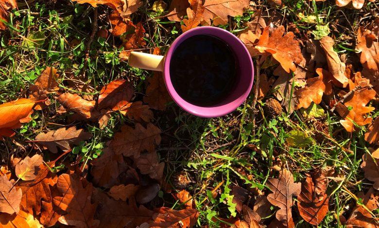 koronavírus a káva
