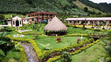 Photo of Prečo je kolumbijská káva taká slávna a akú úlohu zohral Juan Valdez s jeho mulicou?