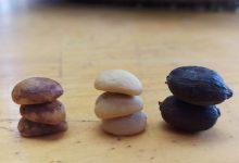 Photo of Metódy spracovania kávy – suchá, mokrá, honey – a ich analýza