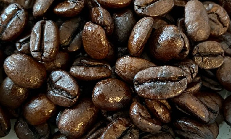 olejnaté kávové zrná